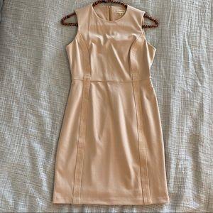 Blush Calvin Klein work dress